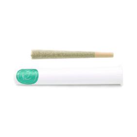 1 gram Pre-Roll: Curaleaf Frosted Zinn OG