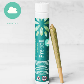 1 gram Pre-Roll: Garden Remedies Rainmaker (Hybrid)