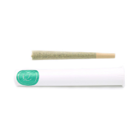 1 gram Pre-Roll: Curaleaf Cookie Dawg (Hybrid)